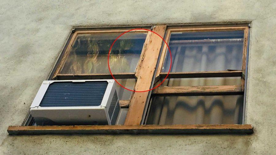 126 N Almont window