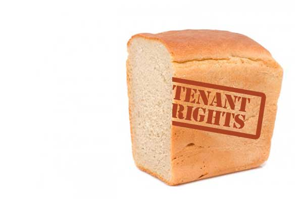 tenant rights half-loaf