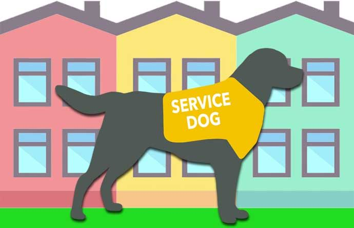 service dog graphic